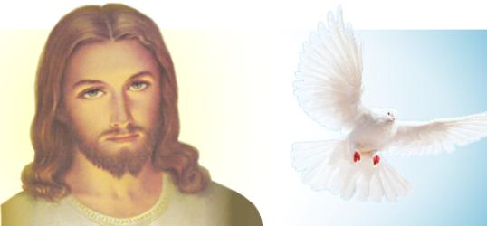 Gesù Amore